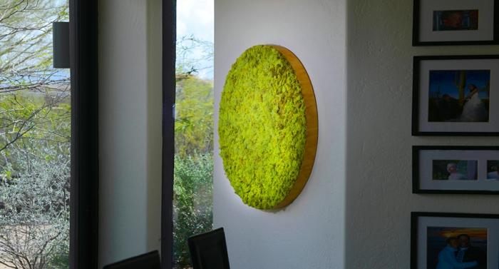 déco murale faite de mousse végétale