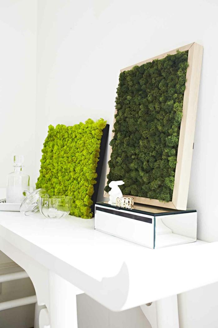 décorer le salon avec de la mousse végétale