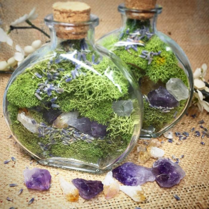 diy terrarium mousse végétale