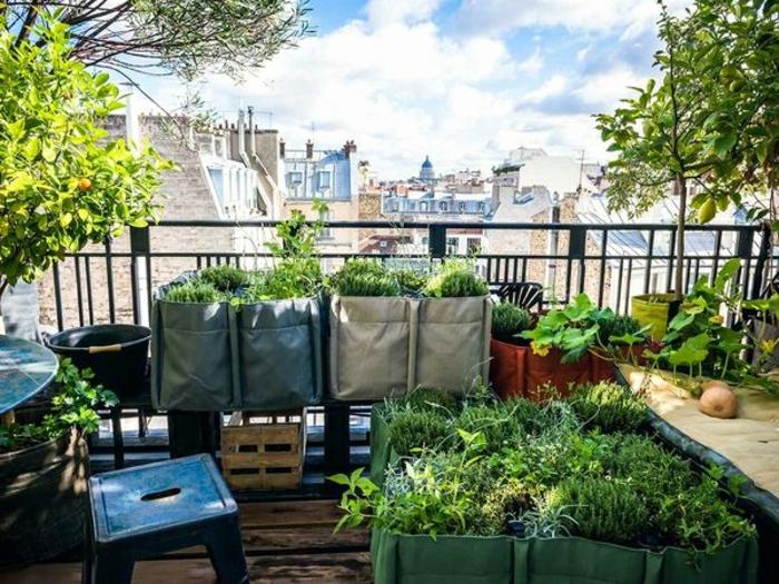 faire pousser des plantes potager balcon