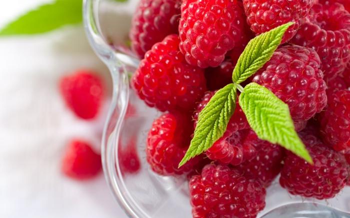 framboisier fruits