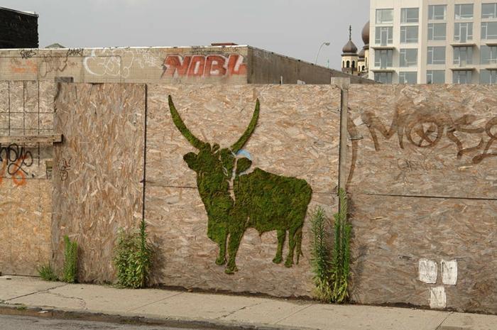 graffiti animal mousse végétale
