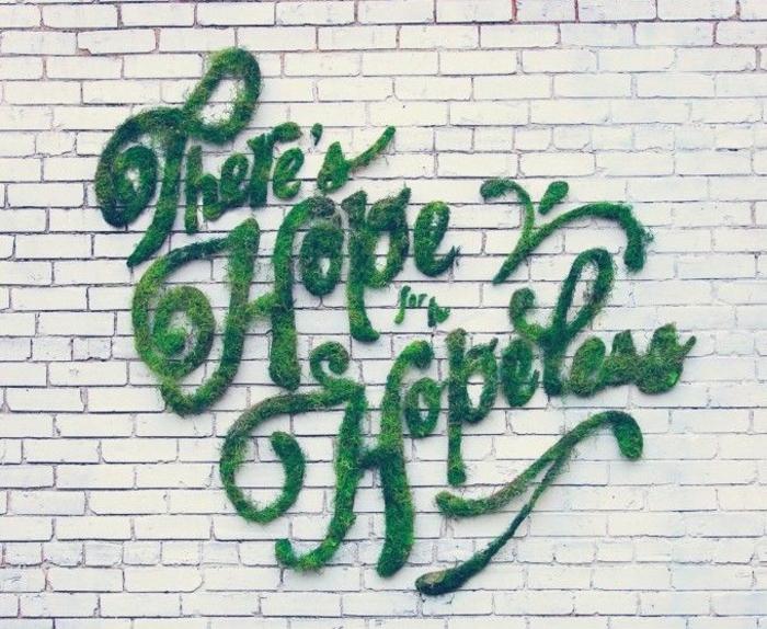 graffiti mur de briques mousse végétale