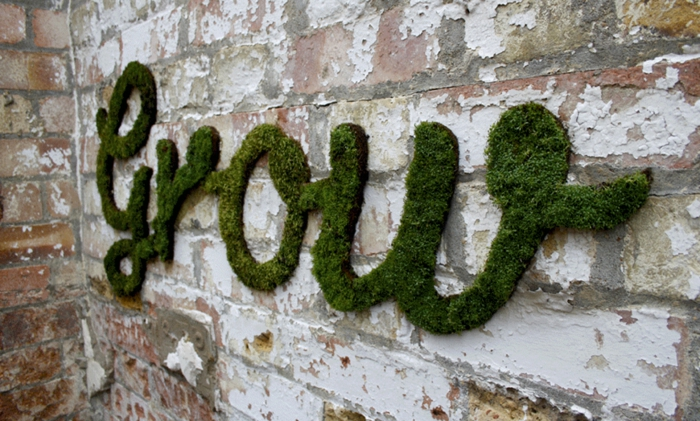 graffiti street art mur mousse végétale