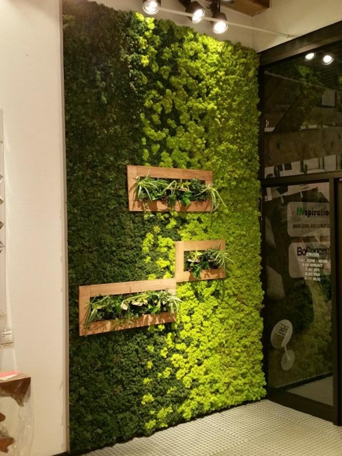 inspiration déco mousse végétale mur