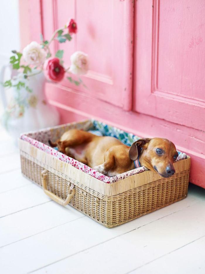 lit chien panier tressé