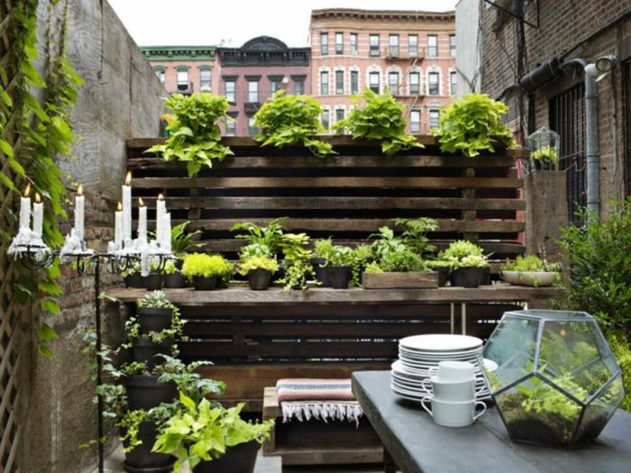 mur végéral potager balcon