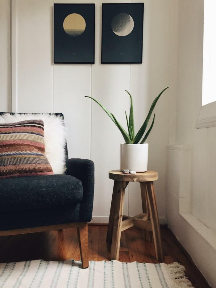 plante d'aloe vera sur table de support salon