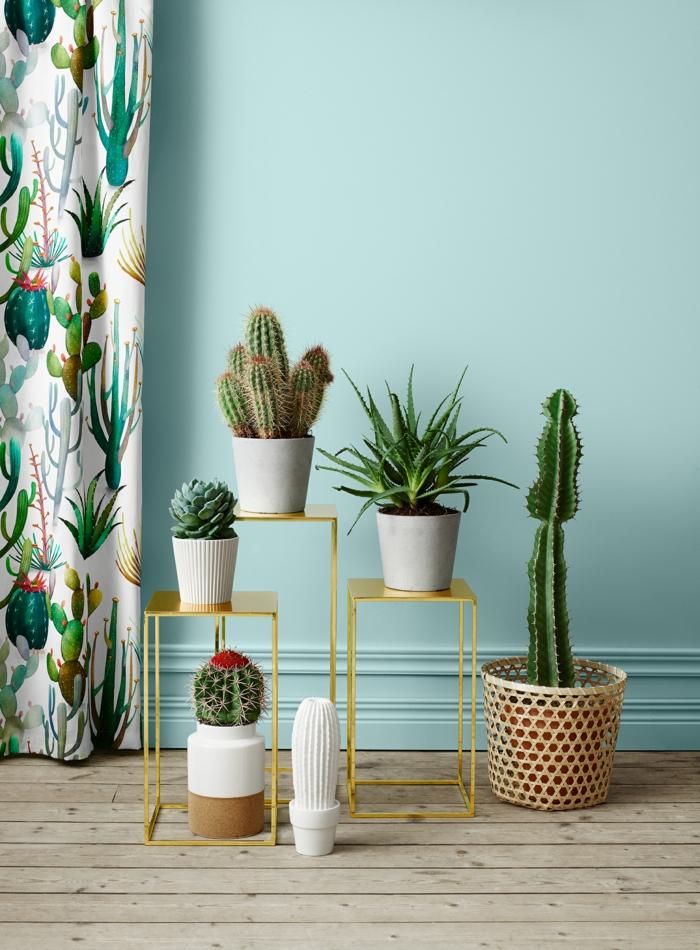 décoration mexicaine avec cactus