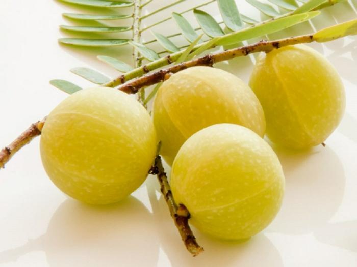 fruits amla poudre d'amla