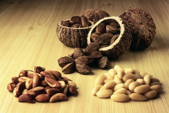 noix du brésil pour être en bonne santé