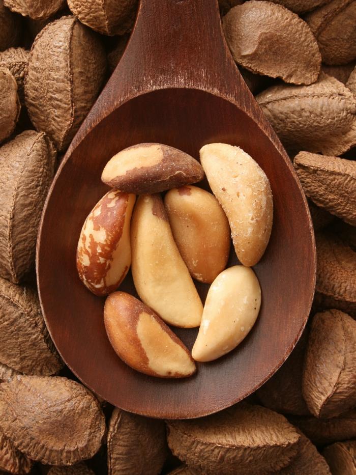 noix du brésil dans une cuillère en bois