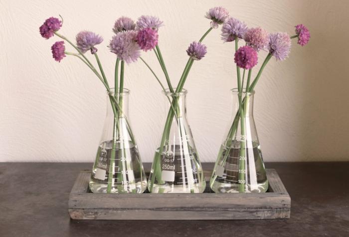 vase soliflore plantes vives