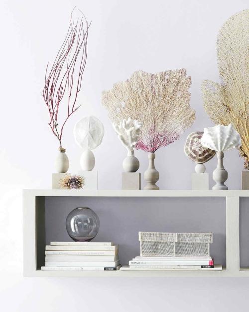 Idées d'artisanat de coquillages jolie décoration sur l' étagère