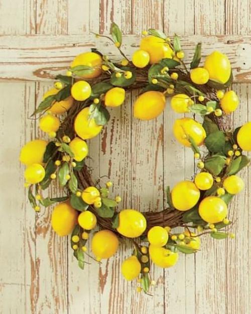 Idées de couronnes d'agrumes cercle en branches de vignoble