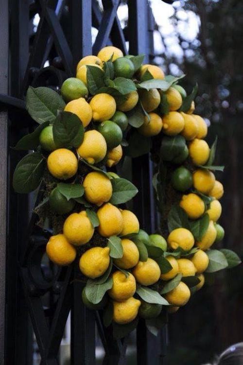 Idées de couronnes d'agrumes jolie décoration sur grille de fer