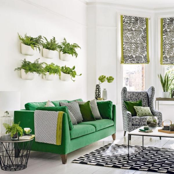 Idées de salon vert clair avec beaucoup de plantes vertes