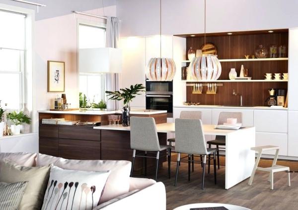 Salon avec salle à manger cuisine à côté
