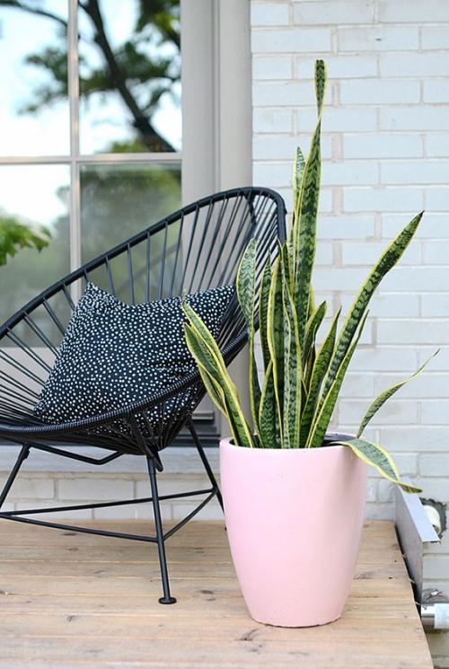 chaises de jardin en forme de coquillage