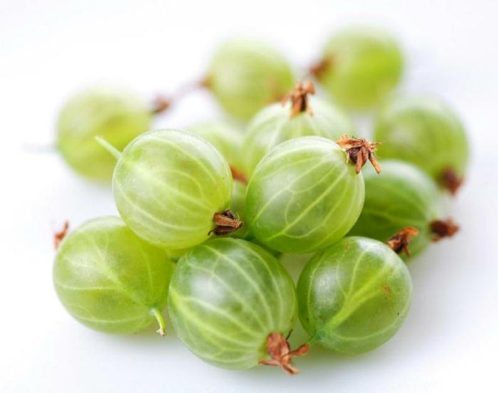 fruit groseille à maquereau verte