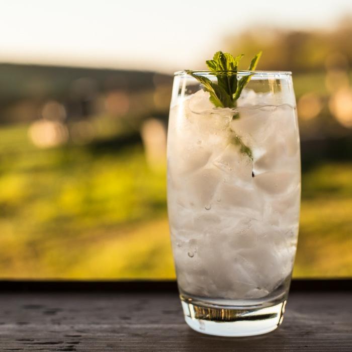 idée recette slushie liqueur de sureau vodka