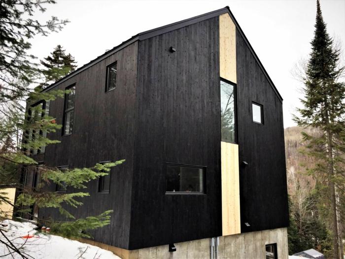 maison moderne shou sugi ban