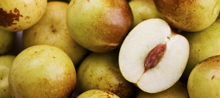 semis jujubier dattes chinoises fruits coupés