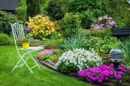 aménagement jardin beaucoup de verdure