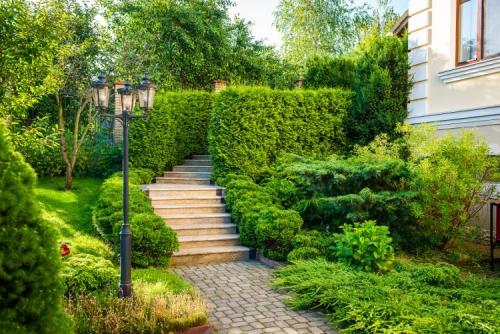 aménagement jardin en pente douce beaucoup de verdure au pied de la maison