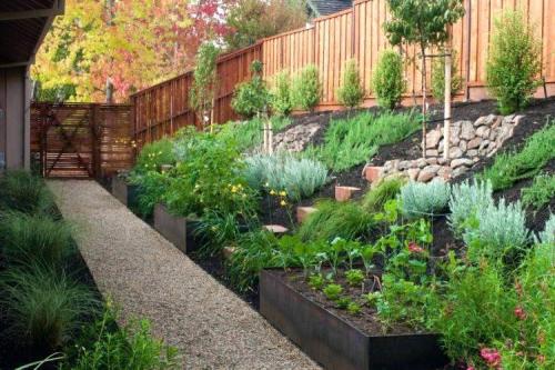 aménagement jardin en pente douce petit espace bien terrassé
