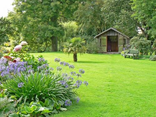 aménagement jardin large espace pelouse