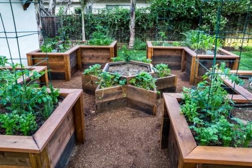 aménagement jardin potager bien structuré