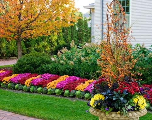 aménagement jardin rangées de végétation différente