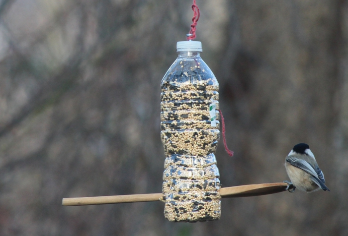 bouteille en plastique mangeoire oiseaux