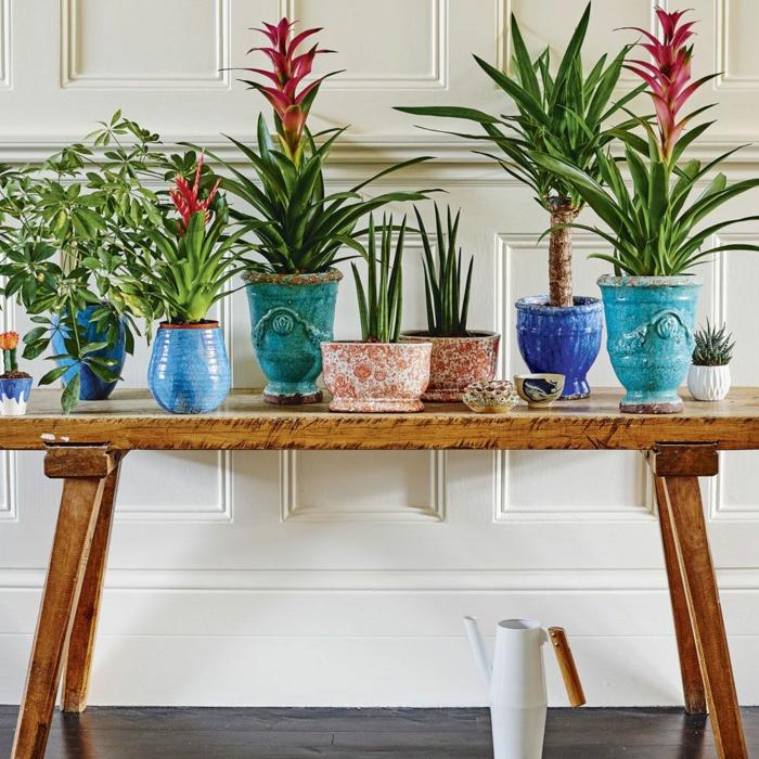 déco couloir étroit avec des plantes