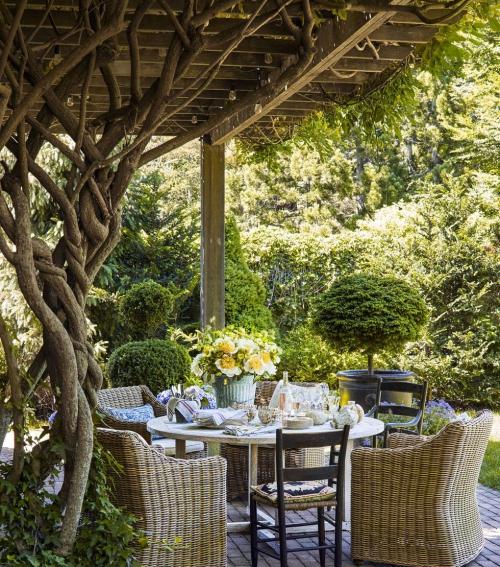 décoration extérieure végétation abondante