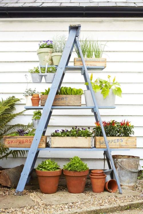 décoration jardinière extérieure échelle adaptée aux jardinières