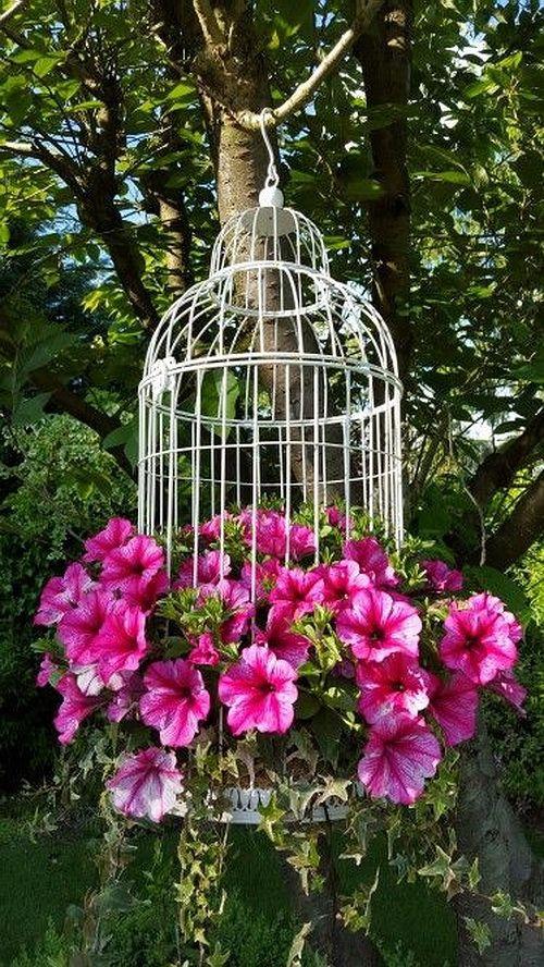 décorer le jardin avec objets de récupération cage à oiseaux pendue