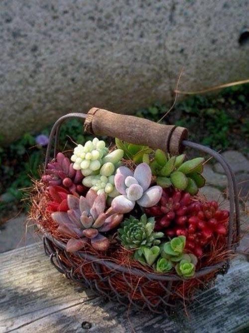 décorer le jardin avec objets de récupération corbeille de fer