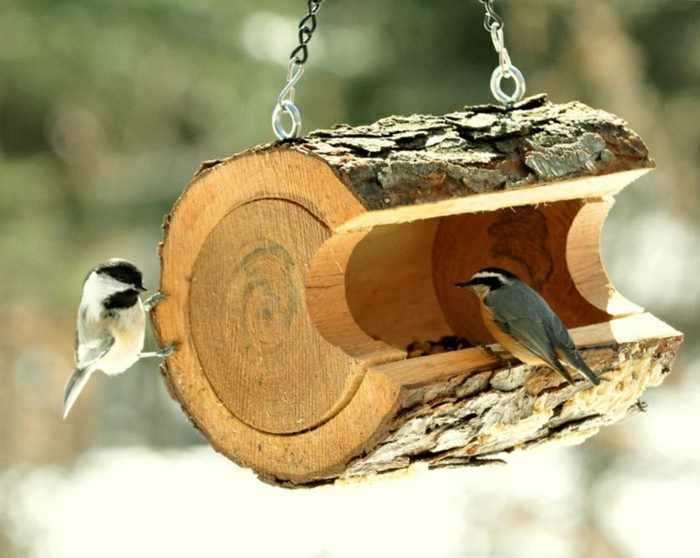diy idée mangeoire oiseaux