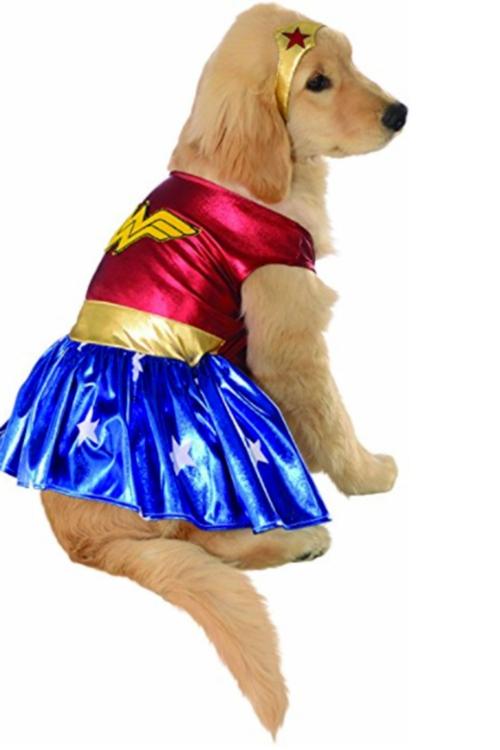idée déguisement Halloween costume de vedette