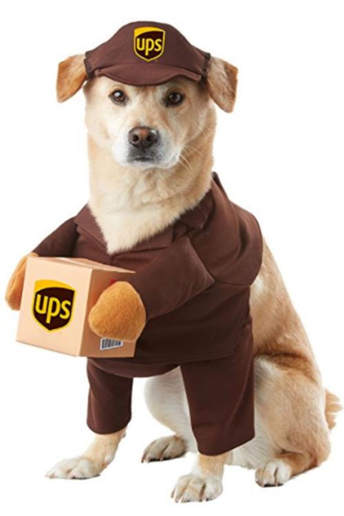 idée déguisement Halloween costume réussi de facteur