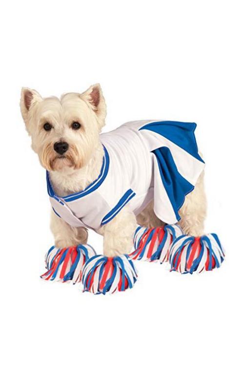 idée déguisement Halloween robe pour chien en blanc et bleu
