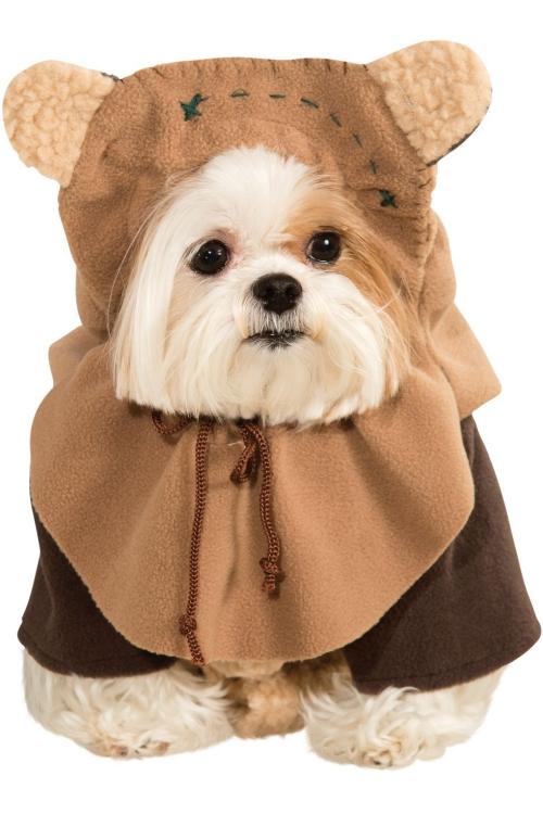 idée déguisement Halloween tenue amusante pour votre chien