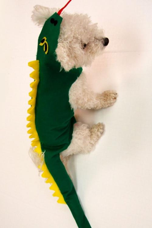 idée déguisement Halloween un dragon vert