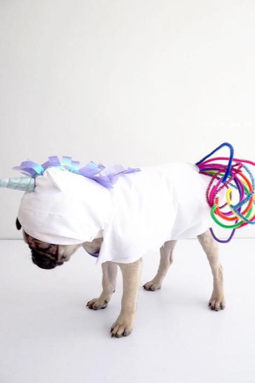 idée déguisement Halloween un drap blanc pour costume