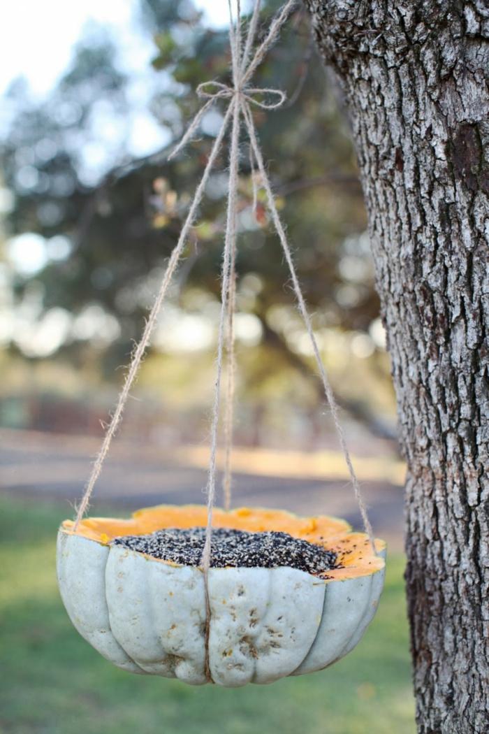 idée recyclage pour une mangeoire oiseaux