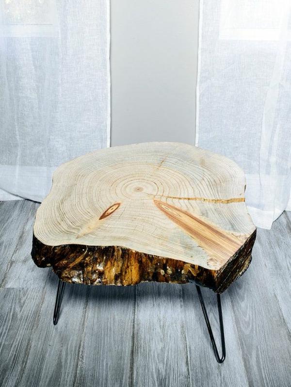 idée salon table basse tronc d'arbre