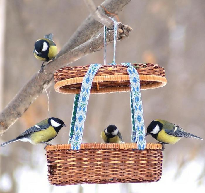 idée unique mangeoire oiseaux