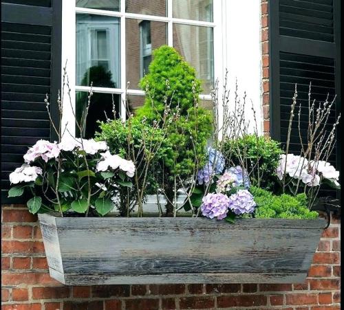 jardinière balcon fleurs et arbustes
